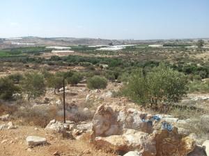 Bild över Abu Azzams (och flera andras) mark i sömzonen. Gröna linjen, som är den internationellt erkända gränsen för Israel, börjar inte förrän vid horisonten. Foto: Samuel Skånberg