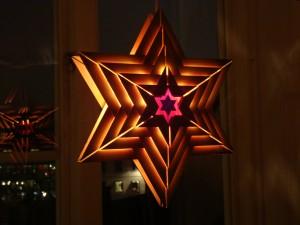 Julstjärnan i biskopsgården