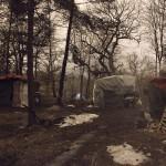 Lägret i skogen