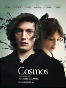 Cosmos_2015_poster