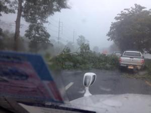 Ett tropiskt oväder kan dubbla restiden.