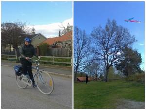 10 Bikes and Kites for Blog 11