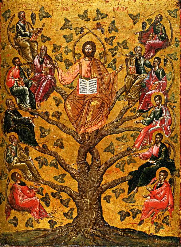Jesus är den sanna vinstocken och huvudet för kroppen. Tydliga nätverksliknelser!