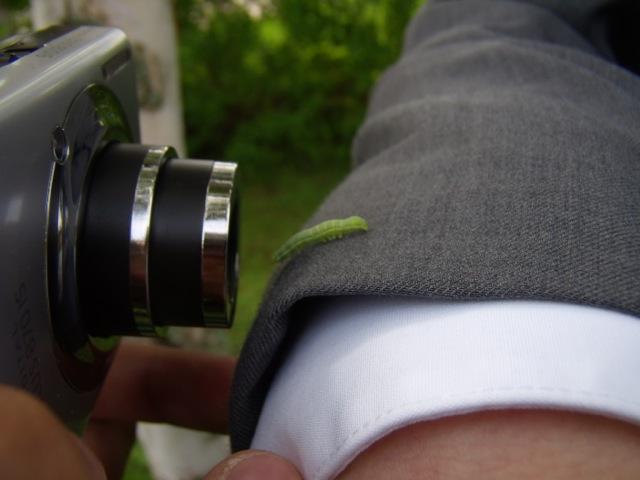Skapelsen har blivit medveten om sig själv, som när den här larven blir iakttagen och fotograferad.