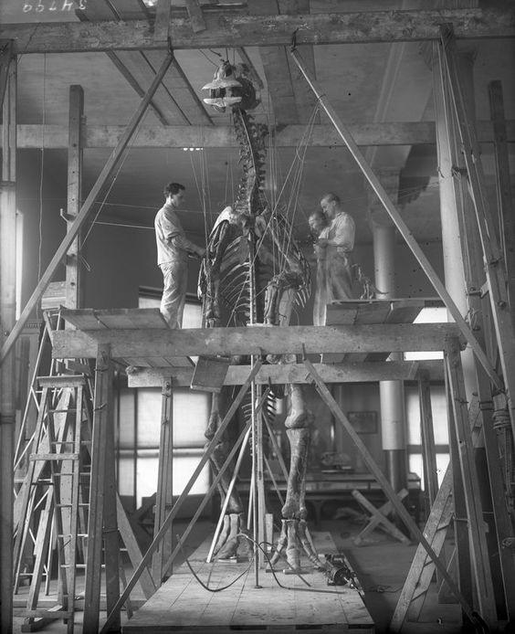 Att bygga på det starka skelettet? Eller om att få fullborda sitt verk?