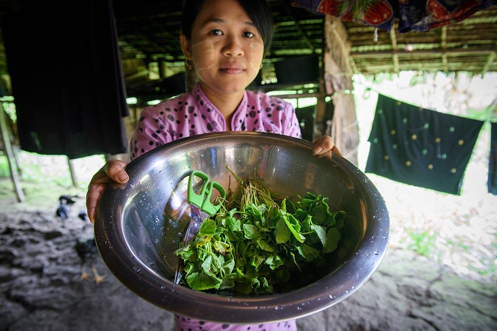 Daw Wah Wah tillhörde de allra fattigaste i byn Sar Oh Chaung i Burma. Hon har fått hjälp tack vare ett mikrolån. Foto: Magnus Aronson /IKON